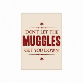 MAGMHP39 - HARRY POTTER - MAGNET METAL - HARRY POTTER (MUGGLES GET YOU DOWN)