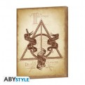 ABYDCO485 - HARRY POTTER - CANVAS DEATHLY HALLOWS (30X40)