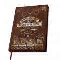 ABYNOT032 - HARRY POTTER - A5 NOTEBOOK QUIDDITCH