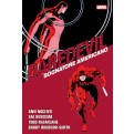 DAREDEVIL COLLECTION 15 - SOGNATORE AMERICANO
