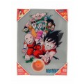 DRAGON BALL - GLASS POSTER (30X40CM) - CHARACTERS