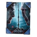 HARRY POTTER - GLASS POSTER (30X40) - HARRY POTTER AND VOLDEMORT