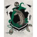 HARRY POTTER - WALL ART - SLYTHERIN