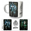HP20 - TAZZA HARRY POTTER AND SIRIUS BLACK