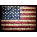MPT - 50 BUSTINE STANDARD SIZE - AMERICAN FLAG - USA