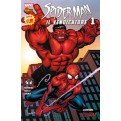 SPIDER-MAN IL VENDICATORE 1 COVER D E. MCGUINNESS