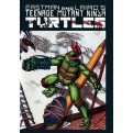 TEENAGE MUTANT NINJA TURTLES (001) 3