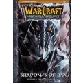 WARCRAFT THE SUNWELL TRILOGY 2 - SHADOW OF ICE