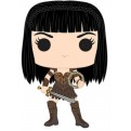 XENA: WARRIOR PRINCESS - POP FUNKO VINYL FIGURE 895 XENA