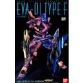 13719 - NGE EVA 01 TEST TYPE F TYPE