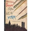 DIARIO DI NEW YORK