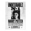 HARRY POTTER - POSTER - UNDESIRABLE N.1