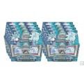 POKEMON - SOLE E LUNA TRAINER KIT BOX 8 MAZZI - ALOLAN SANDLASH & ALOLAN NINETALES