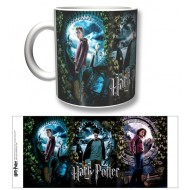 HP14 - TAZZA HARRY POTTER PROTAGONISTS