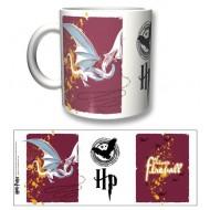 HP17 - TAZZA HARRY POTTER DRAGON