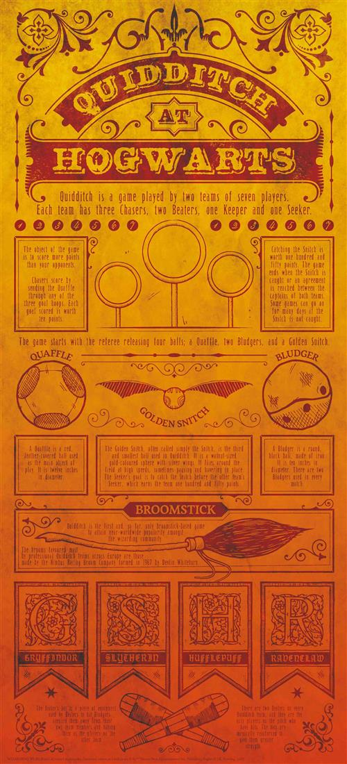 HARRY POTTER - WALL ART - QUIDDITCH RULES